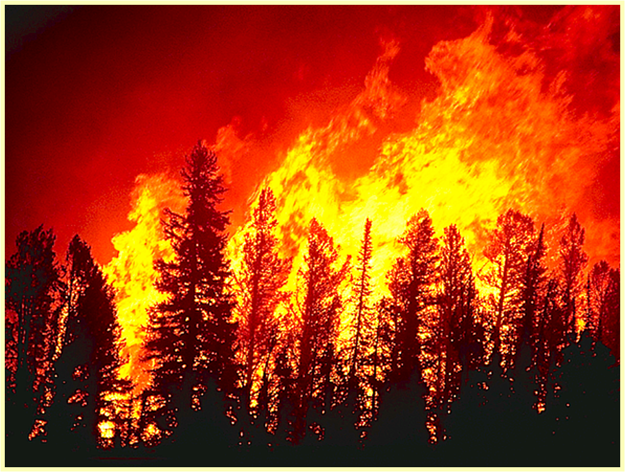 Hayman Wildfire actively burning in the Denver Watershed 2002 – Mike Ryan, US forest Service