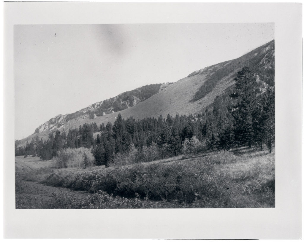 Photo of a hillside northeast of Phillipsburg, Montana next to the future location of U.S. Highway 10A. Date: Between 1906 and 1908 Credit: Frank C. Calkins (USGS) Archived at the Mansfield Library at the University of Montana