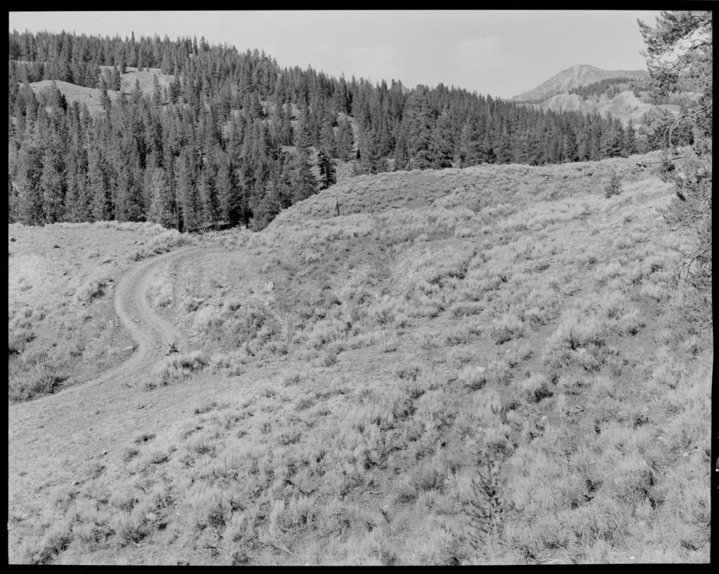 Gruell estimated that fire burned the area in 1842 and 1879. By 1970 the hillsides were mostly covered in lodgepole pine, subalpine fir and Douglas fir. Date: 09/10/1970 Credit: George Gruell (USFS), Bridger-Teton National Forest