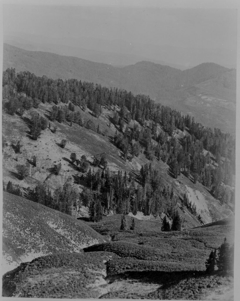 View south along the head of Pilgrim Creek near Wildcat Peak, 1928. Date: 07/24/1928 Credit: Olaus J. Murie, U.S. Fish and Wildlife Service/National Archives and Records Administration