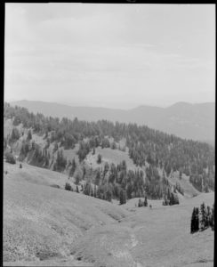 View south along the head of Pilgrim Creek near Wildcat Peak, 1969. Date: 08/28/1969 Credit: George Gruell (USFS), Bridger-Teton National Forest