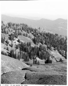 View south along the head of Pilgrim Creek near Wildcat Peak, 2016. Date: 07/28/2016 Credit: Mike Merigliano, Bridger-Teton National Forest