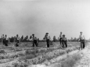 CCC tree planting crew