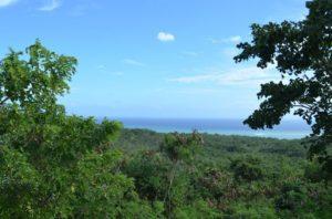 Guanica Biosphere Preserve, Puerto Rico